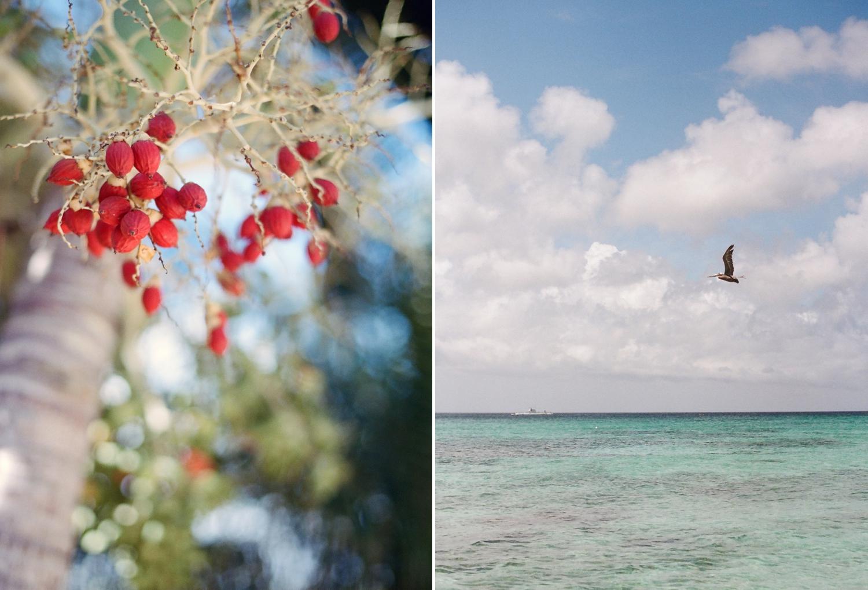 island photographer Audra Wrisley