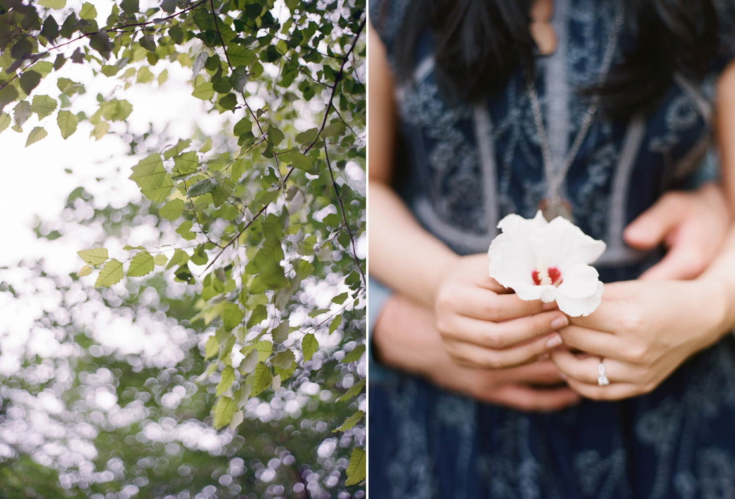 romantic georgetown engagement session on film