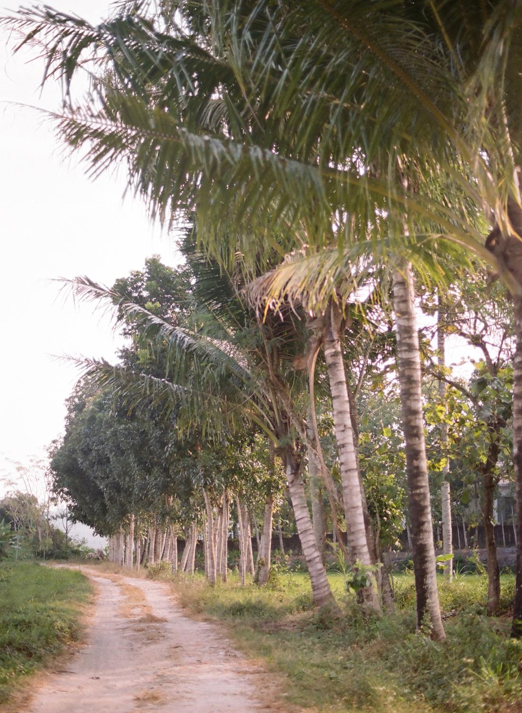 Yogyakarta, Java dirt road