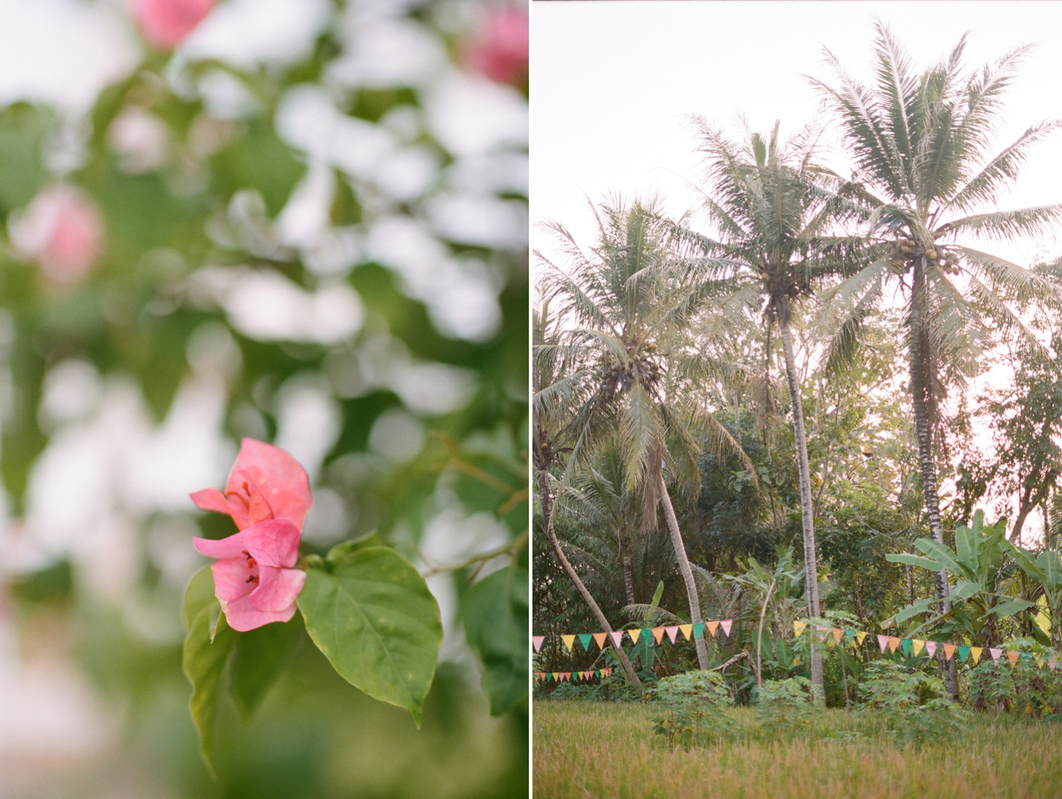 colorful Bali on film