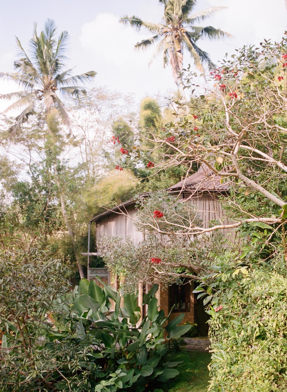 Ubud, Indonesia Resort, Pelangi Estate