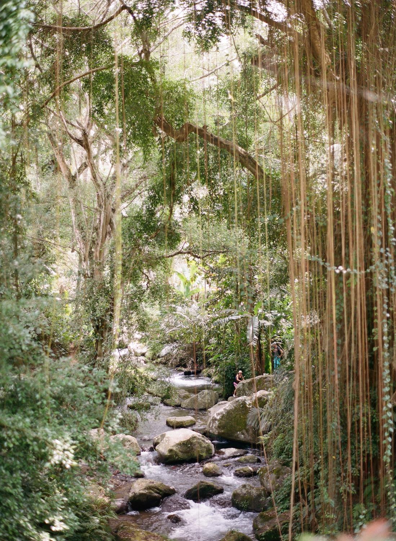 Gurung Kawi Balinese jungle