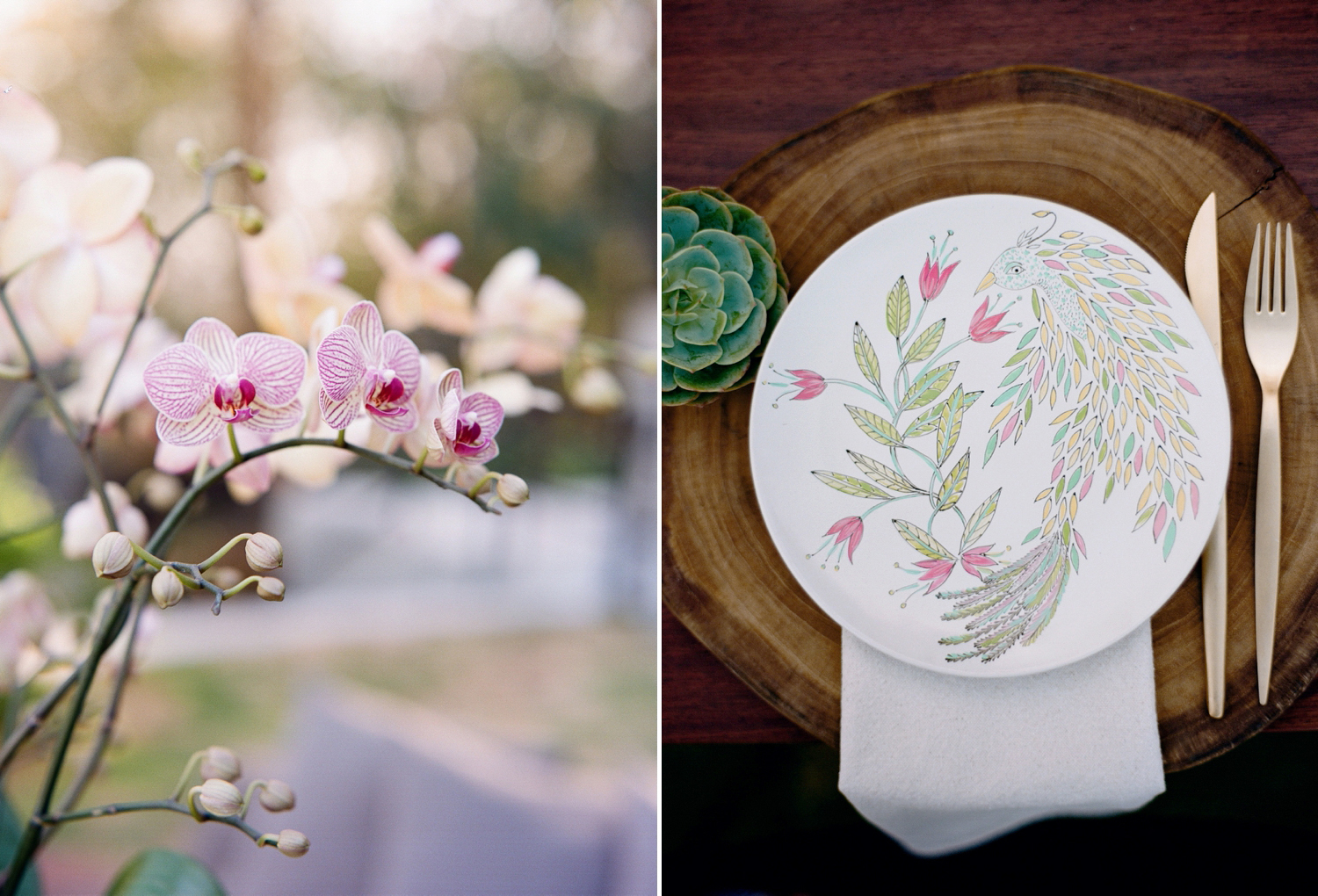 illustrated plates, wedding inspiration costa rica