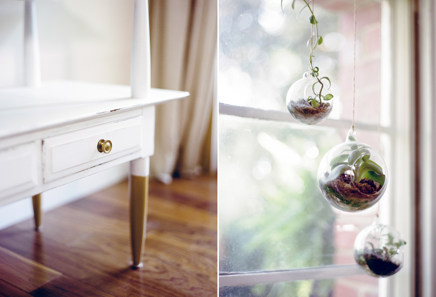 Terrariums Home Tour