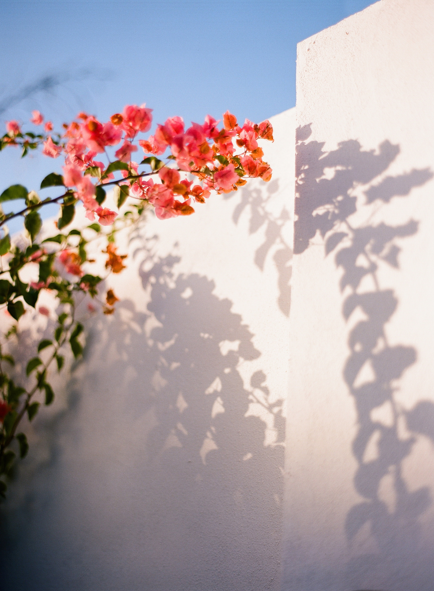 colorful costa rica film photography