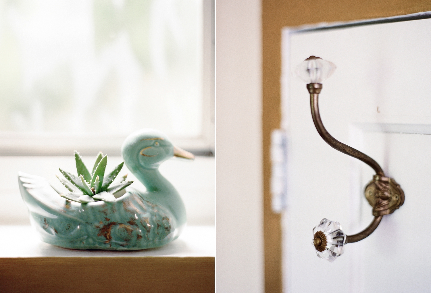 door hooks and succulent decor