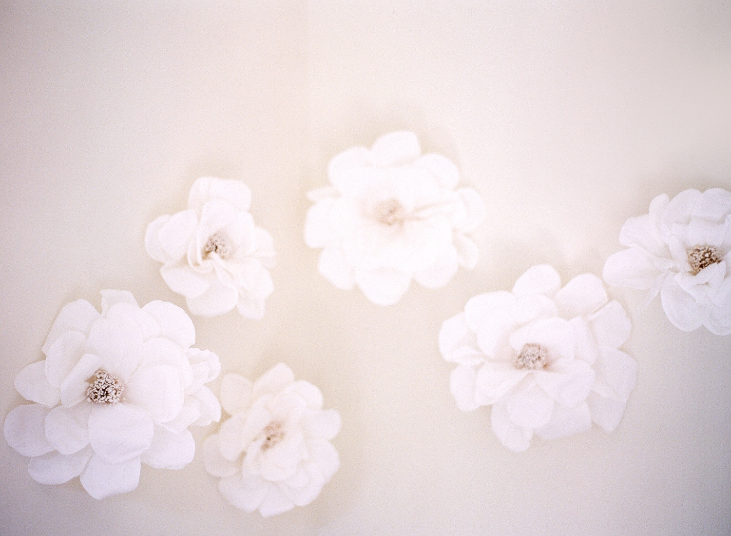 paper flowers, nursery decor