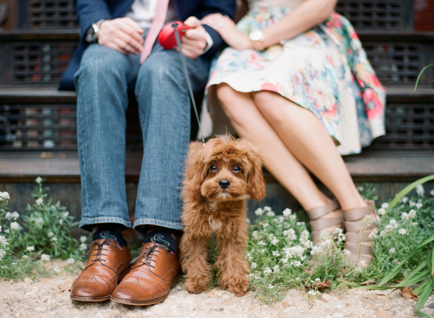 engagement session with puppy Washington dc
