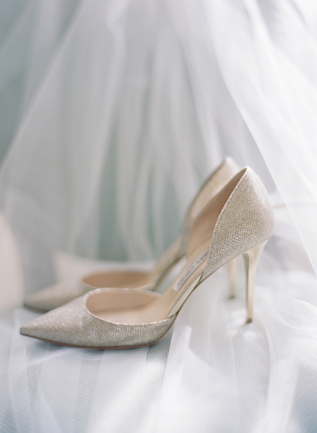 Elegant Wedding Shoes Virginia