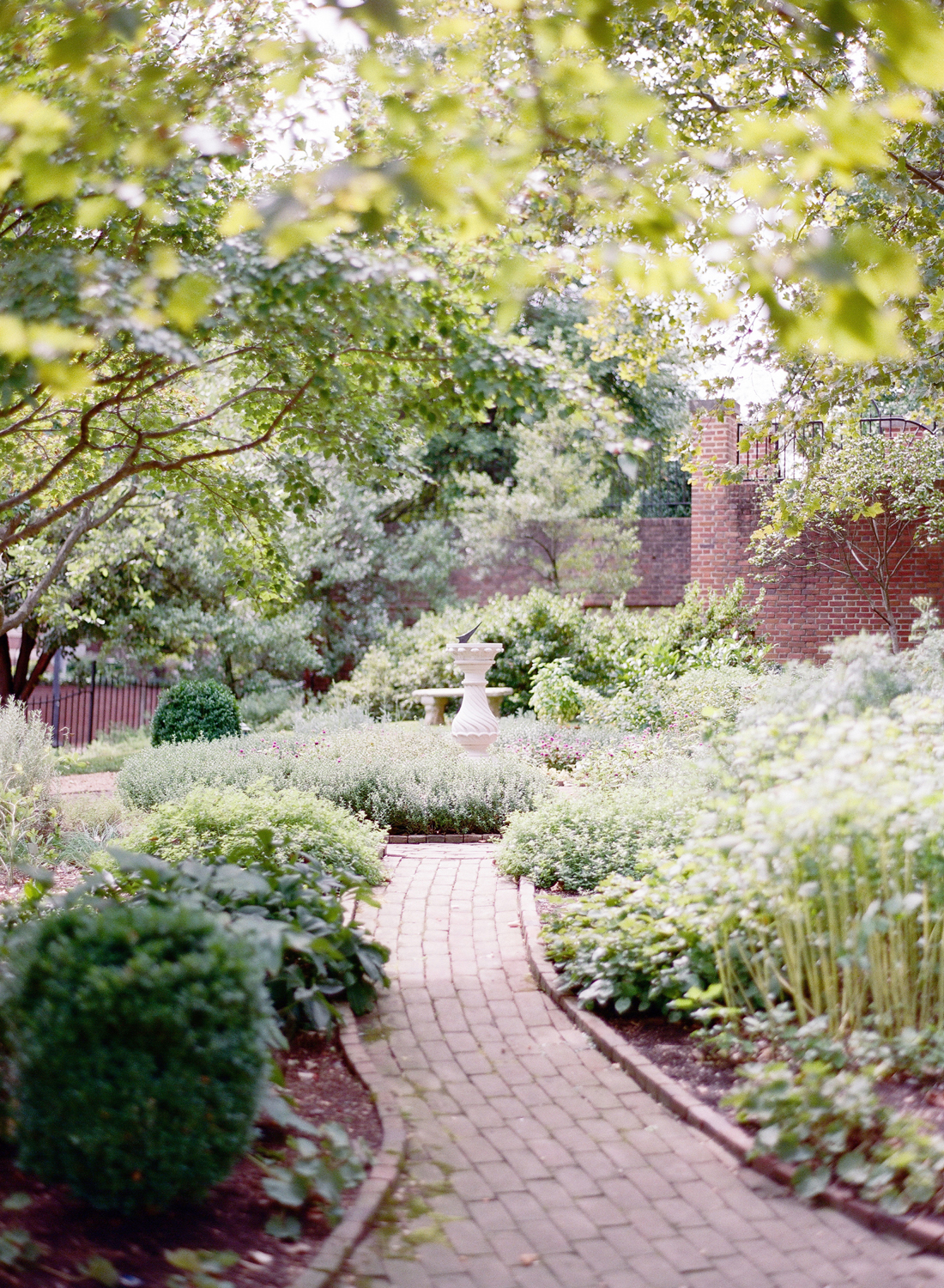 dumbarton house garden wedding