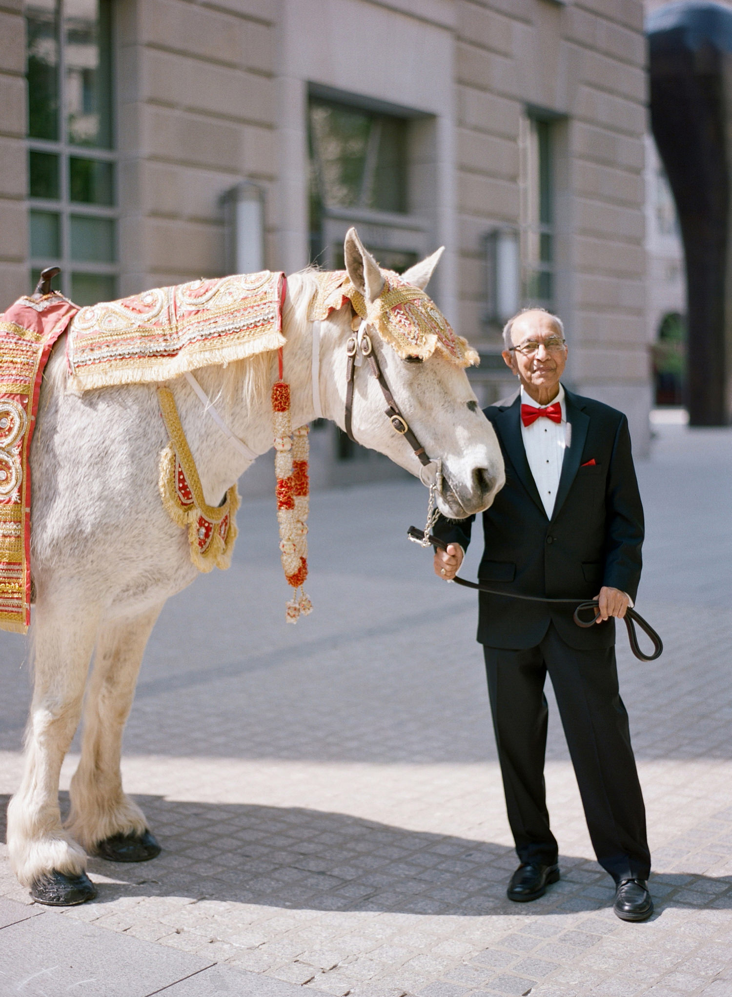 baraat indian wedding DC