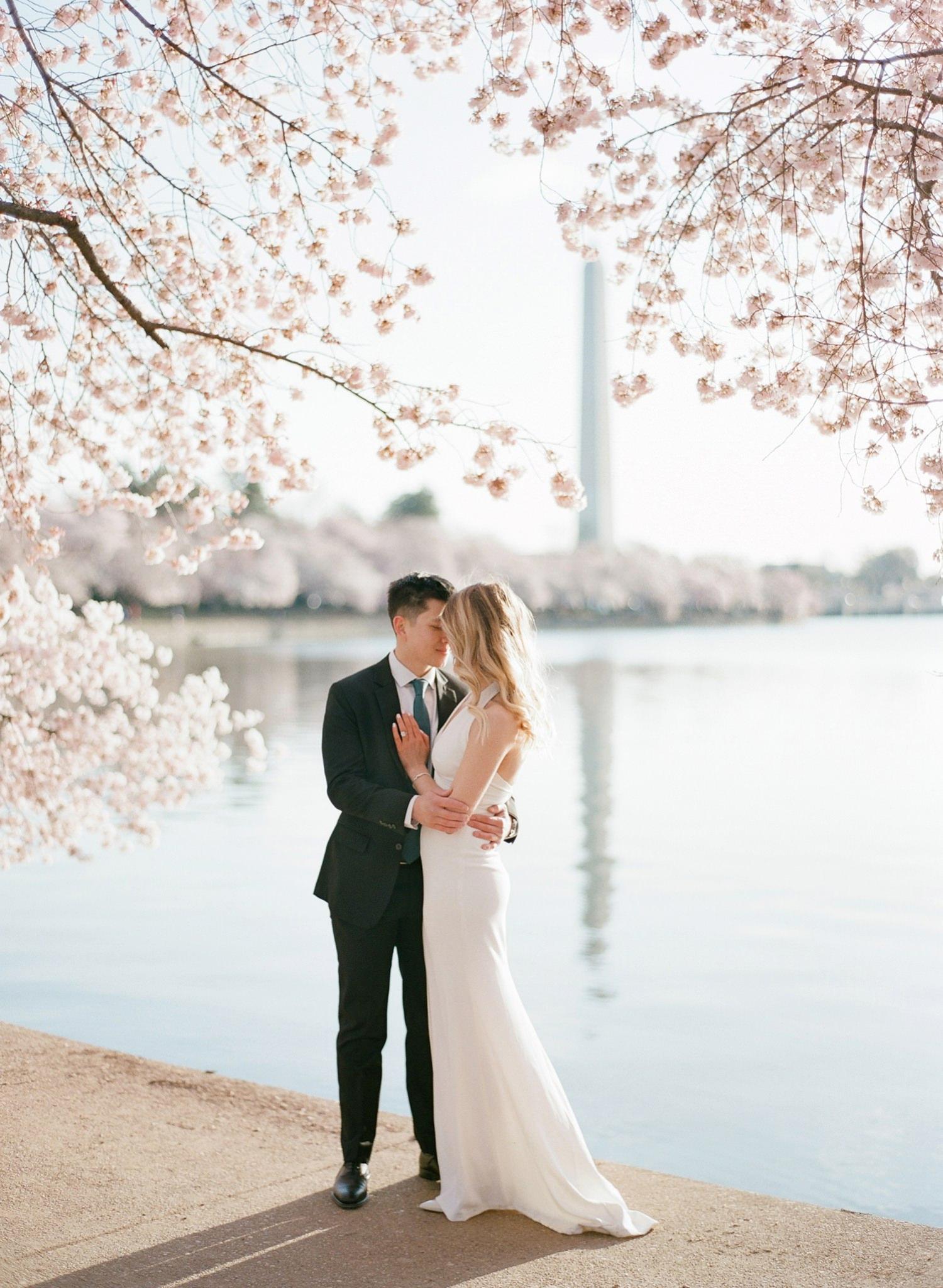 DC Cherry Blossom Engagement