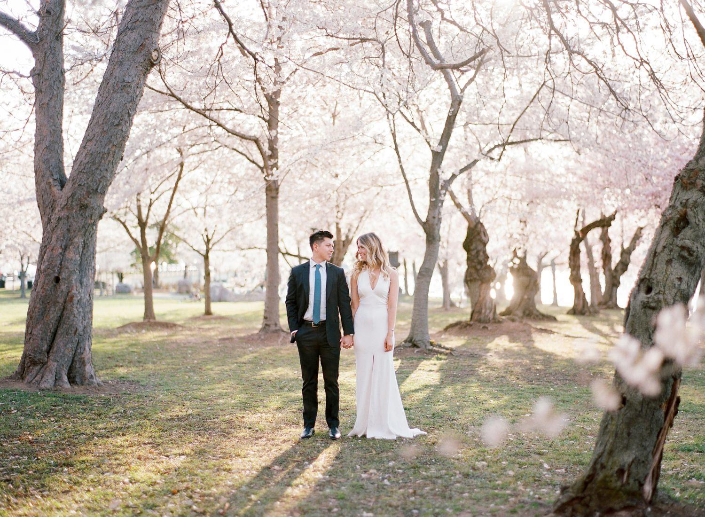 DC sunrise cherry blossom engagement session