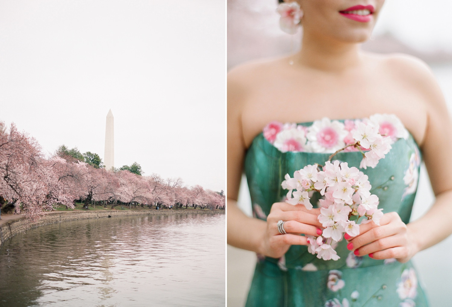 cherry blossom anniversary session in dc