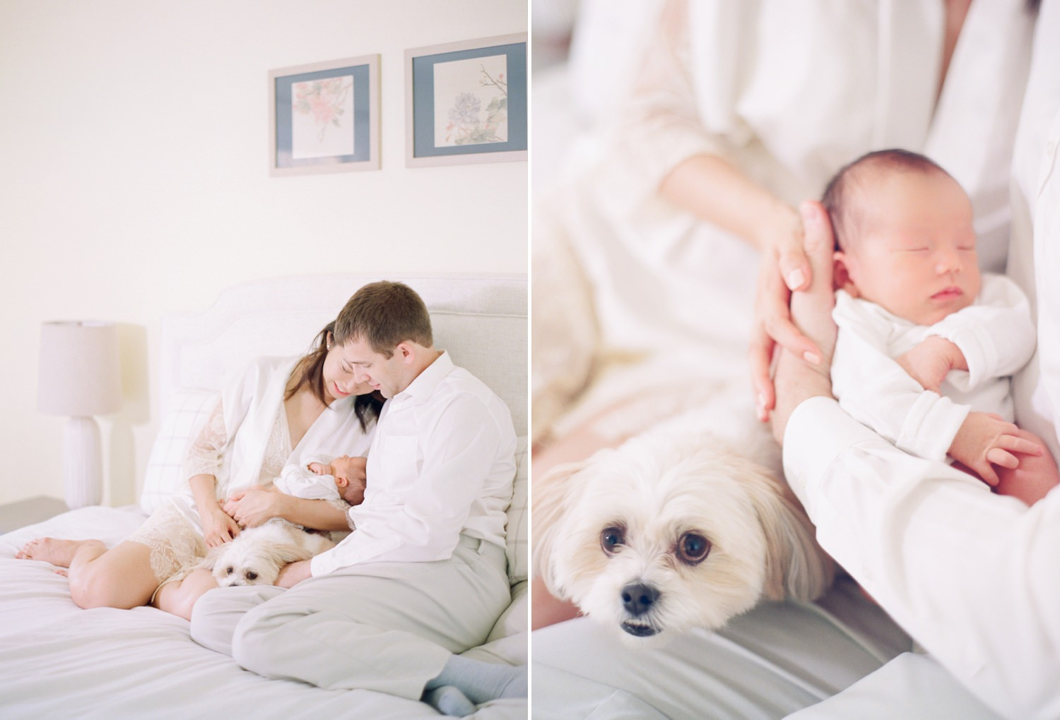 washington dc fine art newborn photographer